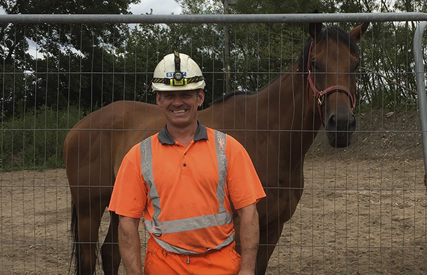 Story Contracting and Story Homes help create pasture for rescued racehorses